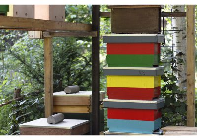 beehive-boxes-14-6-2014